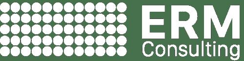 ERM consulting logo